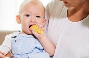 4 Rekomendasi Cemilan Bayi Usia Enam Bulan